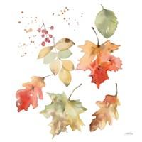 Falling Leaves II Fine Art Print