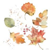 Falling Leaves I Fine Art Print
