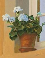 Creancey Geraniums I Fine Art Print