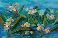 Oceanside Plumeria Fine Art Print
