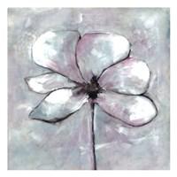 Cherished Bloom 1 Framed Print