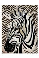 Designer Zebra Fine Art Print