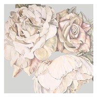 Soft Rose Bunch Fine Art Print