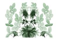 Emerald Growth 1 Fine Art Print