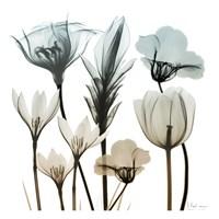 Sandy Floral Cluster 1 Framed Print