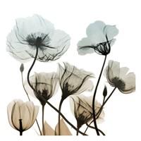 Sandy Floral Cluster 2 Framed Print
