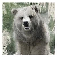 Wildlife 1 Framed Print