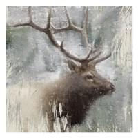 Wildlife 2 Framed Print
