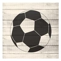 Sports 2 Framed Print