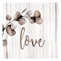 Love Branch Framed Print