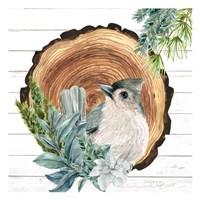 Winter Birds 1 Framed Print