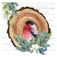 Winter Birds 3 Framed Print