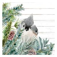 Winter Birds 4 Framed Print
