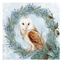 Winter Owl 1 Framed Print