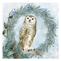 Winter Owl 3 Framed Print