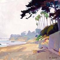 Palm & Cypress; Butterfly Beach Fine Art Print