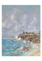 Maine Coast Fine Art Print