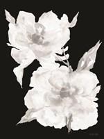 Black & White Flowers II Fine Art Print
