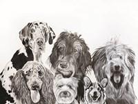 Lots of Dogs Fine Art Print