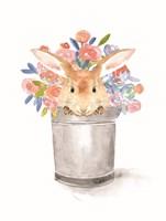 Camilla the Bunny Fine Art Print