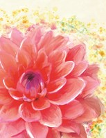 Dahlia Splatter Fine Art Print