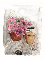 Bicycle in Spring Fine Art Print