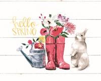 Hello Spring Fine Art Print