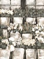 Rows of Flowers Fine Art Print