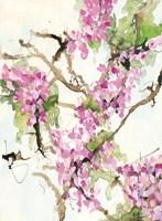 Wisteria in Bloom Fine Art Print