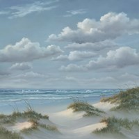 Shoreline III Framed Print