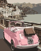 Pink Bug in Europe Fine Art Print