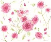 Pink Poises Fine Art Print