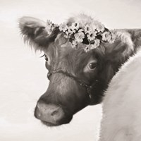 Brown Cow with Flowers Fine Art Print