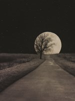 Moonlit Country Road Framed Print