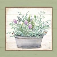 Pot of Herbs I Framed Print
