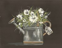 Watering Can Daisy Fine Art Print