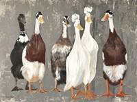Six Runner Ducks Fine Art Print
