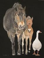Farmyard Trio Fine Art Print