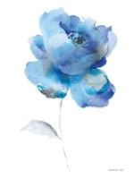 Bold Blooming III Framed Print