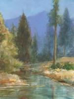 Western Pines Framed Print