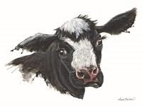 Daisy the Dairy Cow Fine Art Print