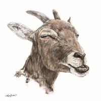 Bill the Goat Fine Art Print