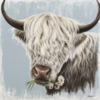 Daisy Coo Fine Art Print