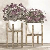 Potted Geraniums Fine Art Print