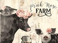 Pink Nose Farm I Framed Print