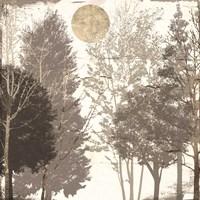 Moon Trees I Framed Print