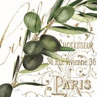 Paris Olives I Fine Art Print