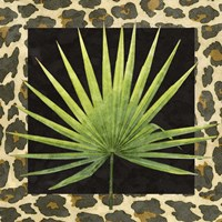 Tropic Collection I Framed Print