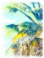 Tropical Glow II Framed Print