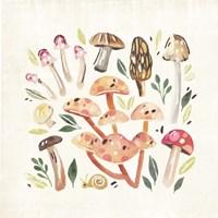 Fungi Field Trip I Fine Art Print